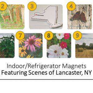 Lancaster Magnets